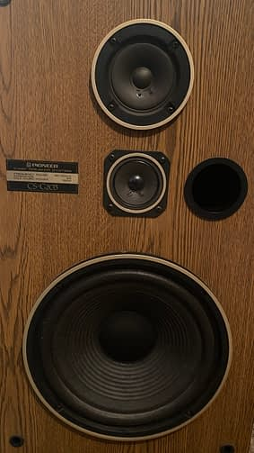 The drivers of the Pioneer CS G203 Speakers.
